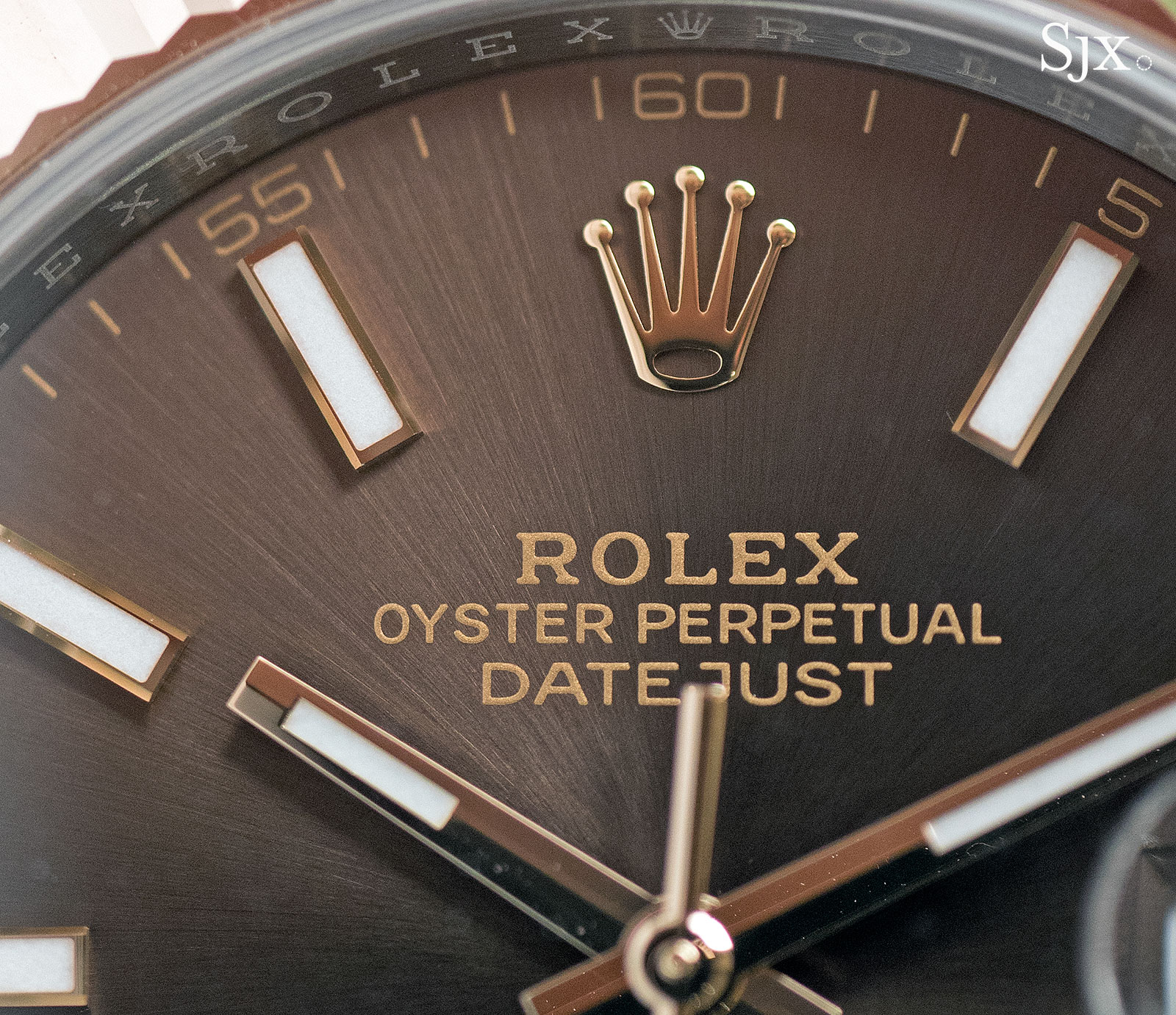 The Rolex Datejust 41 Rolesor