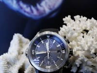 Aquatimer Chronograph Edition Sharks